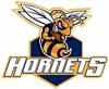 logo_hornets