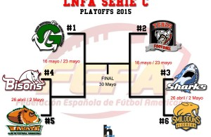 PLAYOFFS_SERIE_C_2015